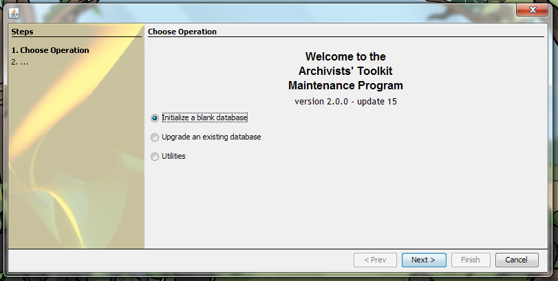 Initialize a blank database is checked